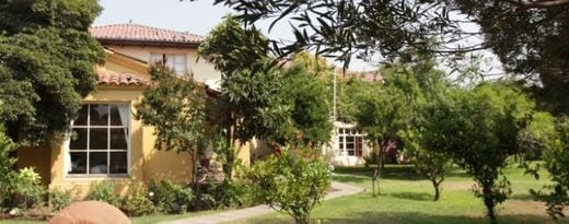 Villa Natural: Un paraíso para limpiar tu organismo