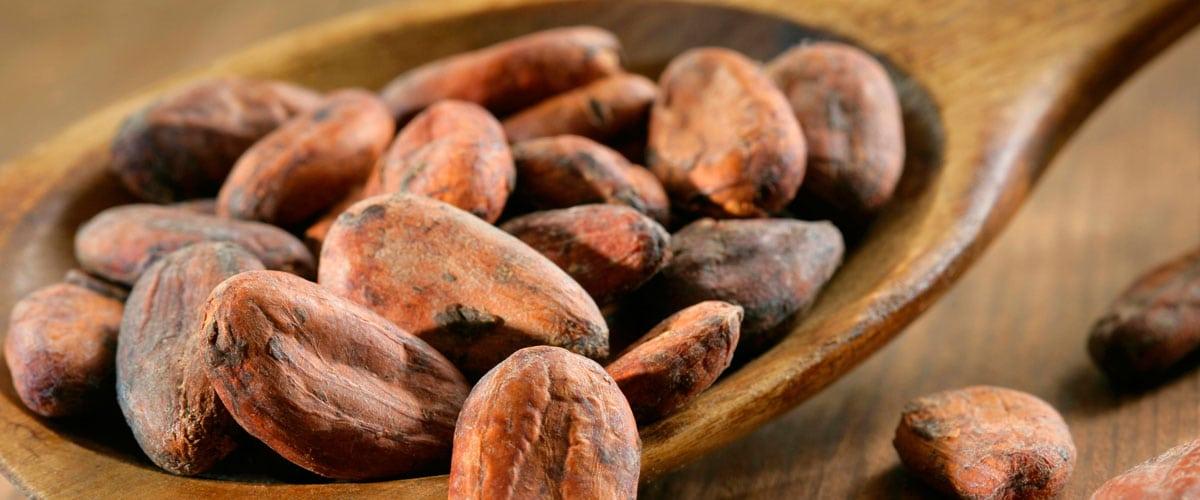 Los poderes medicinales del cacao
