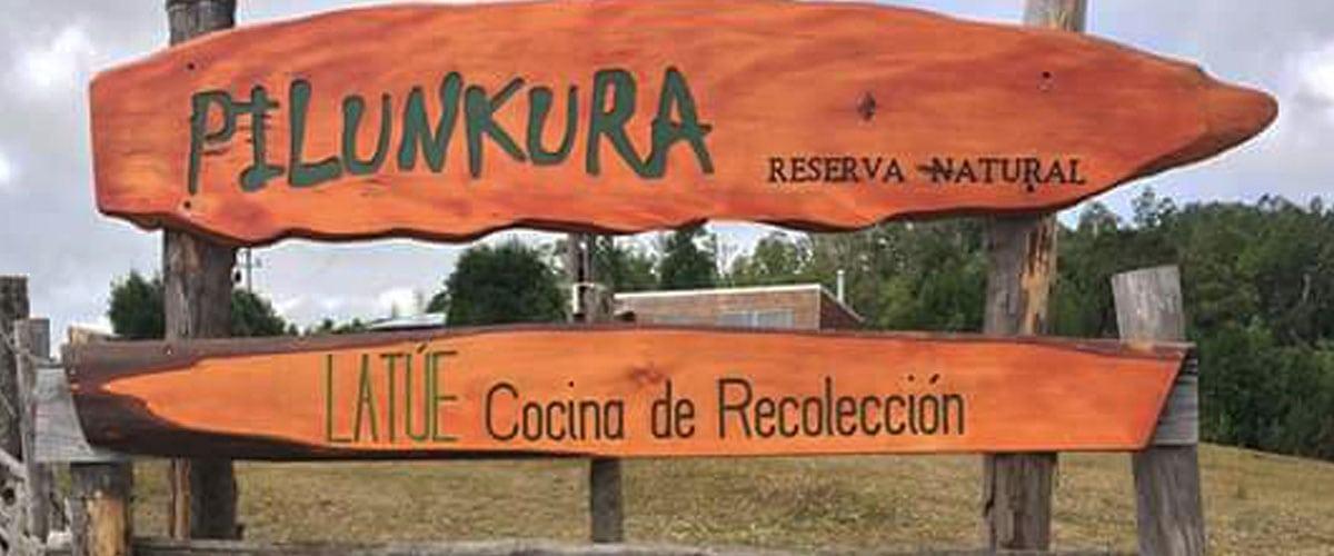 Reserva de Pilunkura