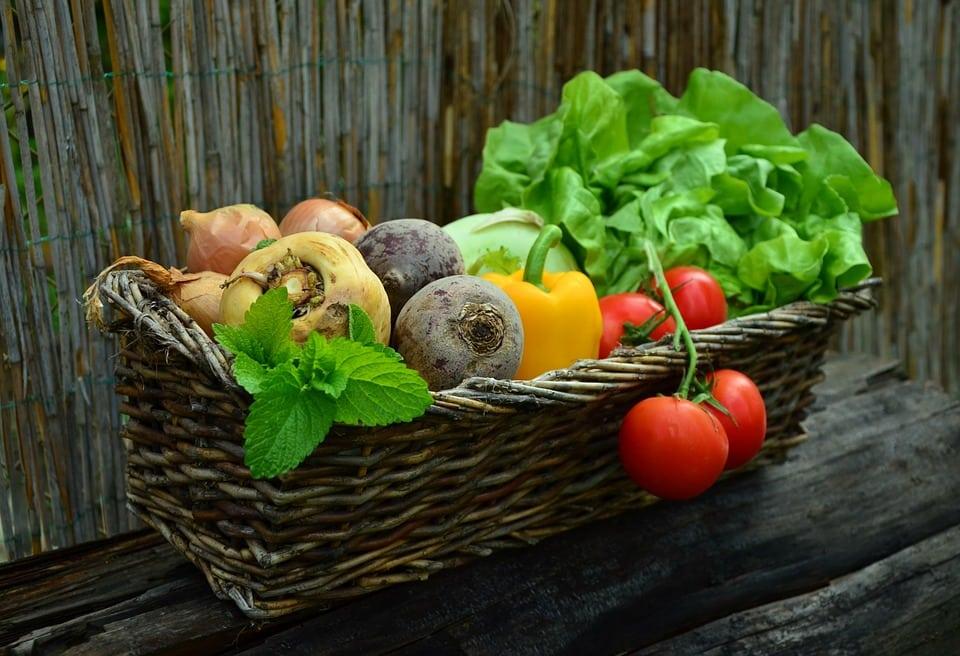 Guía práctica para iniciar vida saludable