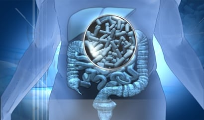 Los probióticos mejoran tu salud digestiva
