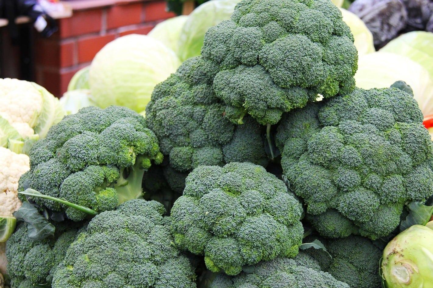 Brócoli: propiedades y beneficios que no conoces